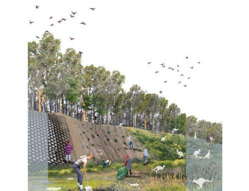 Landscape Australia announces Landscape Architecture Student Prize for 2019