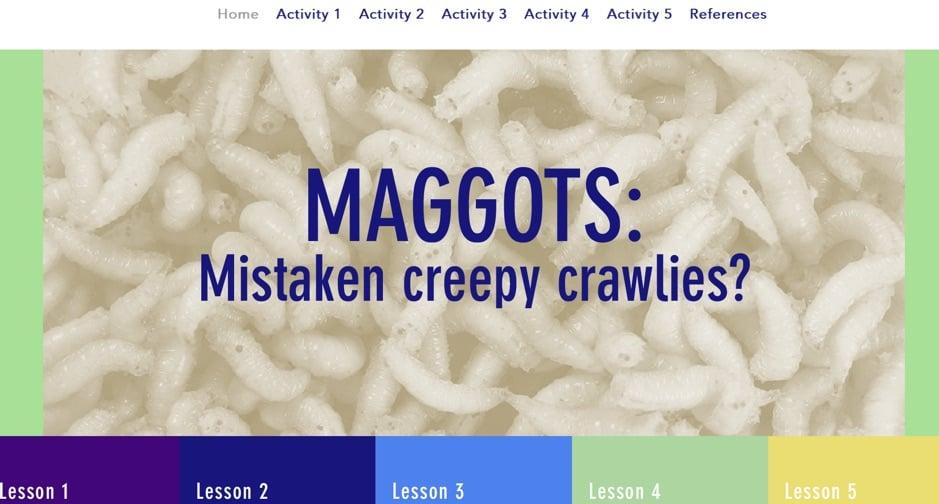 Maggots: Mistake Creepy Crawlies?