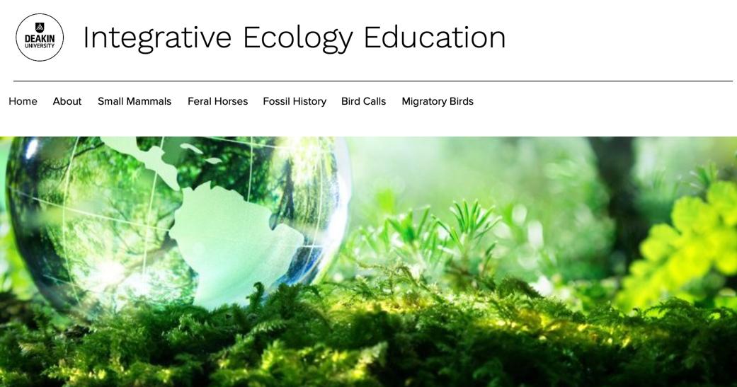 Integrative Ecology Education