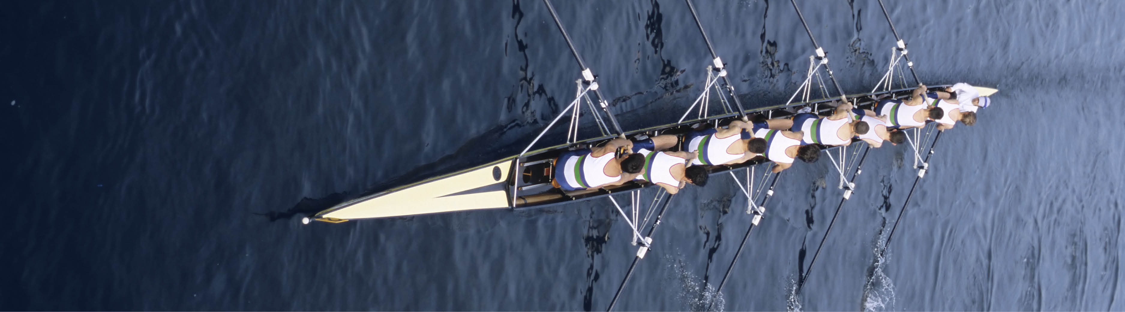 Image of rowers rowing