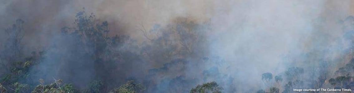 Bushfire in Victoria in January 20201