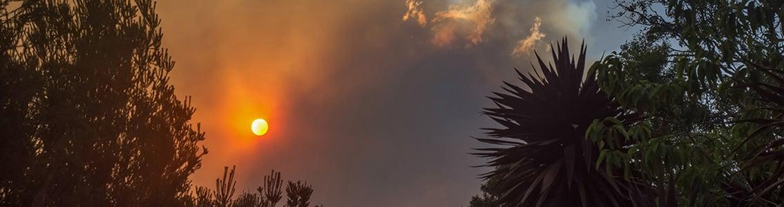 bushfire smoke covering sun