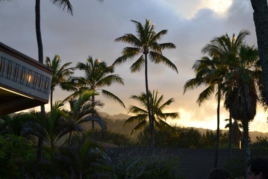 polynesianculturalcentre