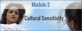 Module 2 - Cultural Sensitivity