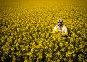 WIL person in yellow flower field with mask